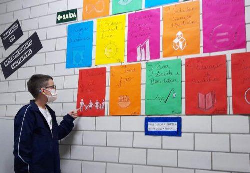 ONU e os objetivos do desenvolvimento sustentável